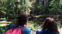 Semenggoh & Jong's Crocodile Farm, Kuching, Cultural Tours