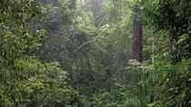 Templer's Park Day Trip from Kuala Lumpur , Kuala Lumpur, Nature & Wildlife