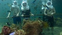 Underwater Observatory Aquarium and Scuba Walking Adventure from Kota Kinabalu, Kota Kinabalu, ...