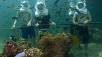 Underwater Observatory Aquarium and Sea Walking Adventure from Kota Kinabalu, Kota Kinabalu, Other ...