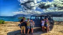 Adventure With A Local: Half Circle Island Tour, Oahu, Half-day Tours