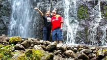 Escape Waikiki - Easy Oahu Waterfall Hike, Oahu, Half-day Tours