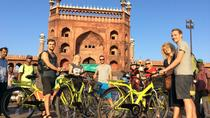 Morning Cycling Tour in Delhi, New Delhi