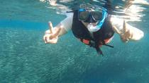 Moalboal Pescador Island Hopping Private Day Tour, Cebu, Other Water Sports