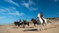Beach Horse Riding in Connemara on the Wild Atlantic Way - Half Day Guided Tour, Galway, Horseback...