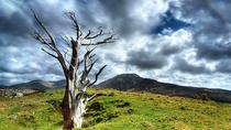 Connemara National Park Nature Trails Self-Guided Day Tour including Lunch, Western Ireland,...