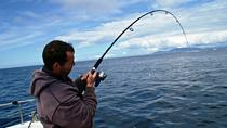 Deep Sea Angling in Connemara Full-Day Guided Fishing Tour from Clifden, Galway, Fishing Charters & ...
