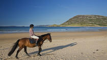 Guided Beach Horse Riding Excursion: Wild Atlantic Way Connemara, Clifden, Horseback Riding