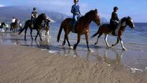 Guided Beach Horse Riding Excursion: Wild Atlantic Way Connemara, Galway, Horseback Riding