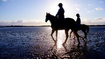 Guided Beach Horse Riding Excursion: Wild Atlantic Way Connemara, Galway, Horseback Riding