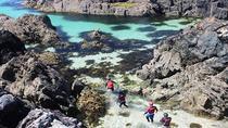 Private Tour: Wild Atlantic Way Sea Kayaking and Coasteering Tour in Connemara, Western Ireland,...