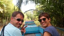 Day Trip to Can Tho and Cai Rang Floating Market from Ho Chi Minh City, Ho Chi Minh City, Private ...