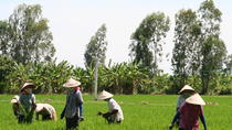 Mekong Delta Day Trip Including Tan Hoa and Co Gong from Ho Chi Minh City, Ho Chi Minh City, Day ...