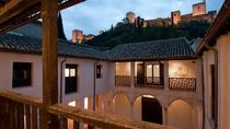 Half-day private Alhambra Palace and Albaicin tour in Granada, Granada, Private Sightseeing Tours