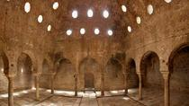 Walking Tour with Skip the Line Ticket to The Nasrid Palaces of the Albayzn in Granada, Granada, ...