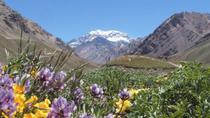 4-Day Trip in Mendoza and The Andes, メンドーサ