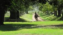 Excursion privée d'une journée à l'estancia argentine, Buenos Aires, Private Sightseeing Tours