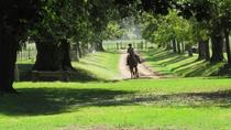 Private Day Tour to an Argentinian Estancia, Buenos Aires