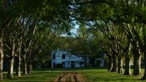 Private tour day at the Estancia La Porteña, Buenos Aires, Private Sightseeing Tours
