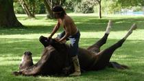 Visit the village San Antonio de Areco and the Estancia, Buenos Aires, Day Trips