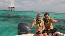 Eco-Adventure and Snorkel Cruise, Islamorada, Snorkeling
