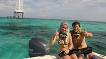 Semiprivate 4hour Eco-Adventure and Snorkel Cruise, Islamorada