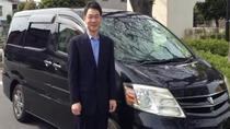 Private Transfer Between Xi'an Xianyang Airport and Xi'an, Xian, Airport & Ground Transfers