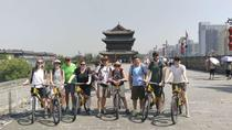 Xi'an Classic Day Tour, Xian, Air Tours