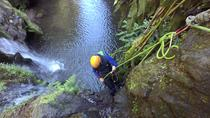 Full-Day Canyoning Including Transfer and Lunch, Ponta Delgada, Climbing