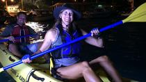 Beginner Kayak Tour: New York After Dark, New York City
