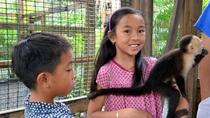 Monkeys and Sloth Hang Out with Island Tour in Roatan, Roatan, Day Trips