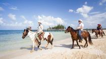 Roatan Combo Tour: Jungle Horseback Riding and Beach Break, Roatan, Ports of Call Tours