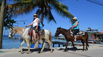 Roatan Combo Tour: Jungle Horseback Riding and Beach Break, Roatan, Horseback Riding