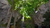 Pirate Rum Factory and Taino Cave-tour vanuit Punta Cana