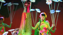 Acrobatic Show with Peking Duck Dinner Private Tour in Beijing