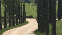 Venice Countryside Tour with Visit to Valpolicella, Wine Tasting and Lunch, Venice, Day Trips