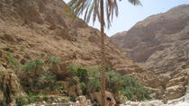Private Full Day 4X4 Tour Wadi Shab and the East Coast From Muscat, Muscat, Private Day Trips
