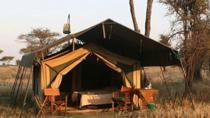 5 Day Private Safari to Tarangire, Serengeti National Park and Ngorongoro Crater from Moshi, Moshi,...