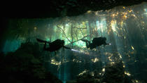 Cenotes and Caverns 2-Tank Dive Tour , Playa del Carmen, Scuba Diving