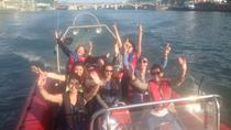 1-Hour Speed Boat Tour in Paris including 20 Minutes Speed Experience and Cruise, Paris