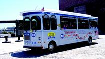 Hop-on-Hop-off-Trolley-Tour durch Boston mit optionaler Hafenrundfahrt, Boston, Hop-on Hop-off Tours
