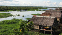 3-Day Amazon Jungle Adventure from Iquitos, Iquitos, Day Trips