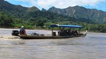 6-Day Madidi and Pampas Amazon from La Paz, La Paz, Multi-day Tours