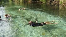 6-Day Pantanal & Bonito Experience, Pantanal, Multi-day Tours