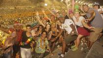 7-Day Tour: Carnival 2017 in Rio de Janeiro, Rio de Janeiro, Multi-day Tours