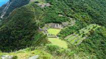 8-Day Choquequirao Trek to Machu Picchu, Cusco, Multi-day Tours