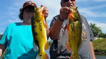 All Day Bass Fishing Trip near Boca Raton, Boca Raton, Fishing Charters & Tours