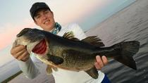 Lake Okeechobee Half Day Fishing Trip near Fort Pierce, West Palm Beach, Fishing Charters & Tours