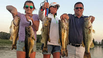 Private Half-Day Lake Trafford Fishing Trip near Naples