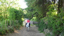 Scenic 1-Hour Horseback Ride Through Unspoiled Mountain Pastures in Tipperary